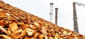 klimaatakkoord-biomassa